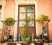 picture of tangerine-tree  - Sicilian balcony with tangerine tree ceramic figurines and vases - JPG