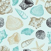 stock photo of cockle shell  - Seamless pattern with sea shells - JPG