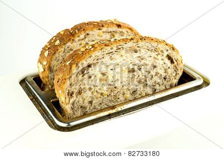 Whole Wheat Bread In Toaster Isolated