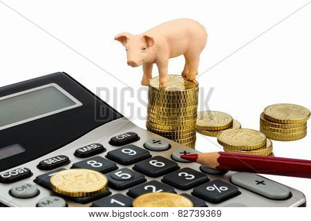 a pig and a calculator as a symbol photo for costs and expenses on a farm in the landwirtschaft.ausgaben, revenue and accounting.