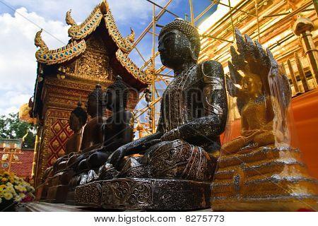 Buddha image in row