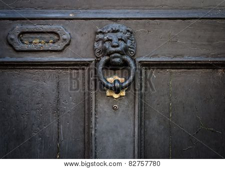 lion head door knocker and letterbox on door