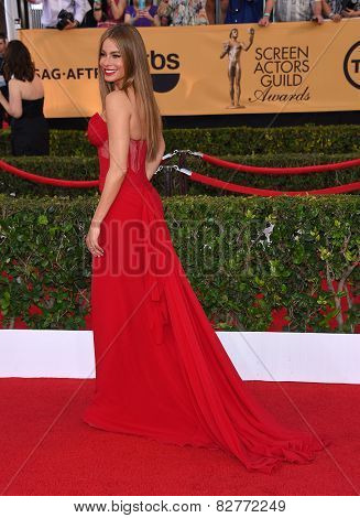 LOS ANGELES - JAN 25:  Sofia Vergara arrives to the 21st Annual Screen Actors Guild Awards  on January 25, 2015 in Los Angeles, CA