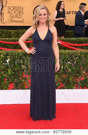 LOS ANGELES - JAN 25:  Amy Poehler arrives to the 21st Annual Screen Actors Guild Awards  on January 25, 2015 in Los Angeles, CA
