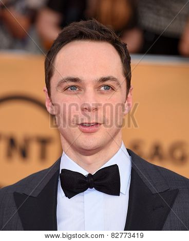 LOS ANGELES - JAN 25:  Jim Parsons arrives to the 21st Annual Screen Actors Guild Awards  on January 25, 2015 in Los Angeles, CA