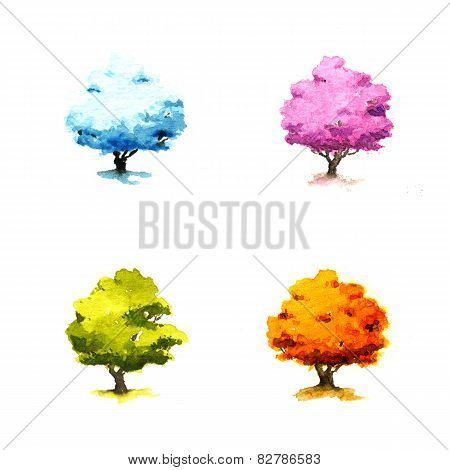 Trees In Different Seasons