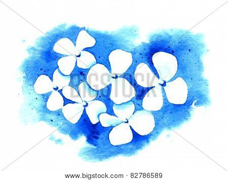 White Flowers On A Blue Background. Watercolor Illustration