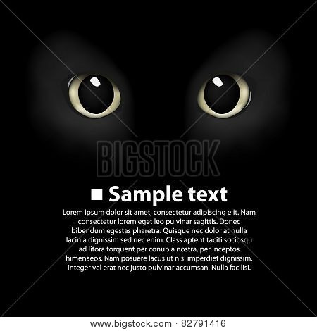 Cat's eyes on a black background