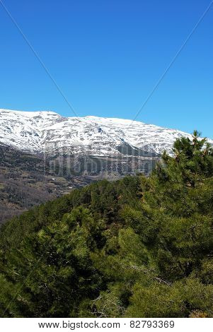 Mountain landscape, Las Alpujarras.