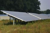 picture of century plant  - Solar power plant outside the town .