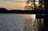 foto of bohemia  - sunset over the pond South Bohemia Czech Republic - JPG