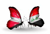 picture of iraq  - Two butterflies with flags on wings as symbol of relations Latvia and Iraq - JPG