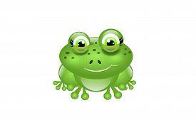 pic of cute frog  - Cartoon cute green frog on white background - JPG