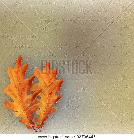 Grunge Paper Design In Scrapbooking Style With Photoframe And Autumn Foliage