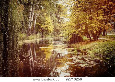 lake in the autumn park