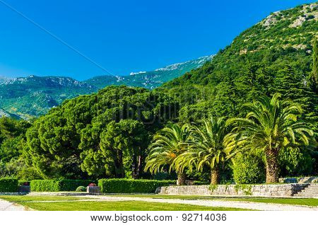 View On Park And Mountains In Montenegro