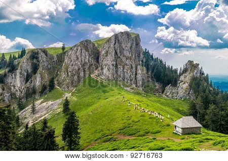 Mountain Landscape With Sheepfold In Carpathian Mountains, Romania