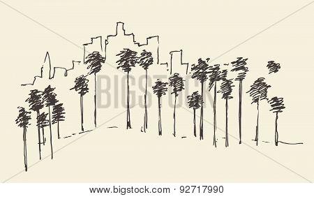 Los Angeles, California, Skyline Engraved Sketch