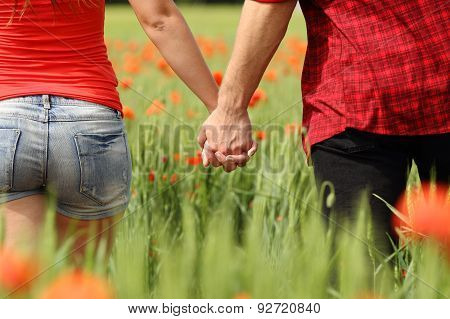Back View Of A Couple Holding Hands In A Field