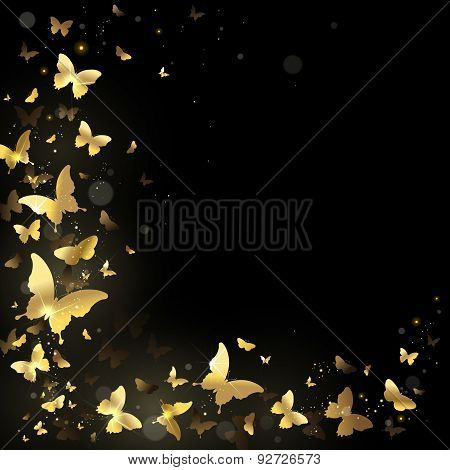 Frame Of Golden Butterflies