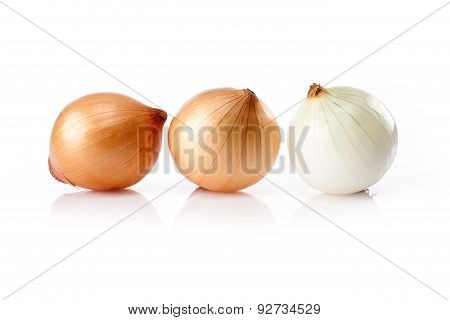Fresh  onion  isolated on white background