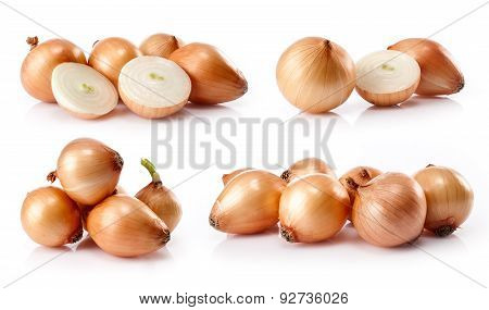 composite of fresh onion  i
