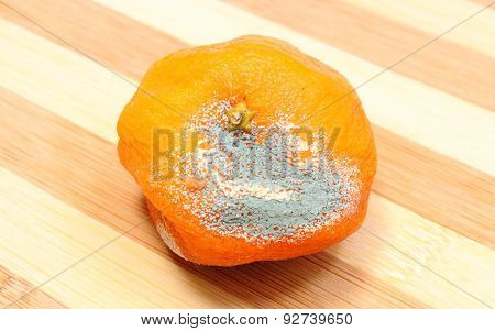 Moldy Mandarine On Wooden Background