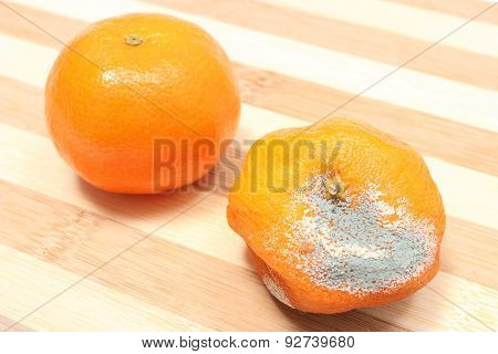 Fresh And Moldy Mandarins On Wooden Background