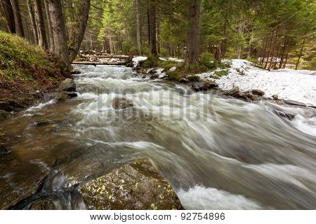 mountain river, stones, water flow, the roots of the trees, landscape, wildlife, river, mountain, st