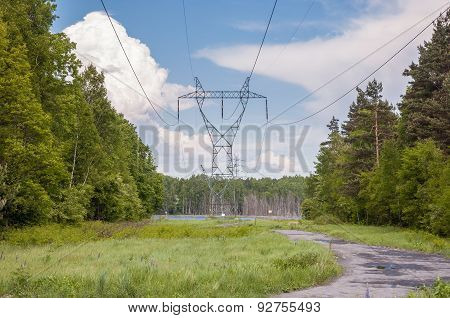 Electricity Transmission Pylon In A Forest