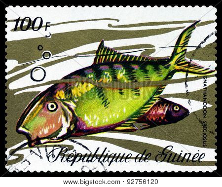 Vintage  Postage Stamp. Fish Gnathanodon Speciosus.