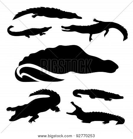 Crocodile Set Vector