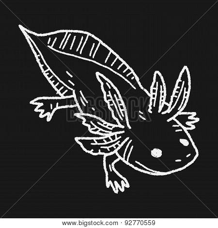 Salamander Doodle