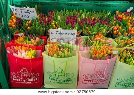 Selling Colorful Dutch Tulips In The Bags, The Netherlands