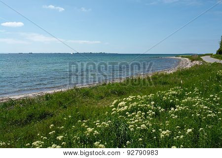Beautiful Coast Line Beach Denmark