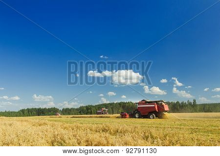 Several Combine Harvesters Working On Oats Farm Field Under Blue Sky During Hot Summer Day