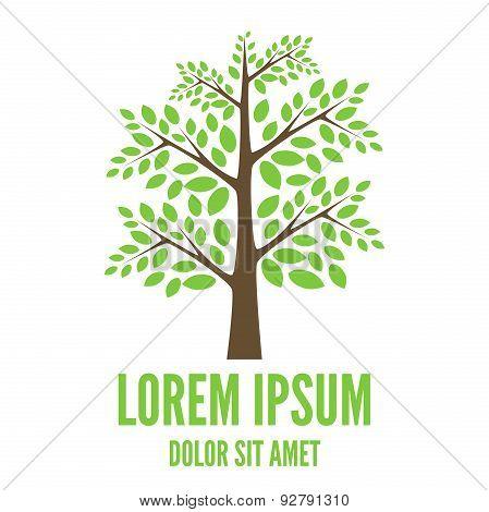 Vector Tree Logo Template