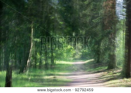 photo artistic impression of a path through a green forest,