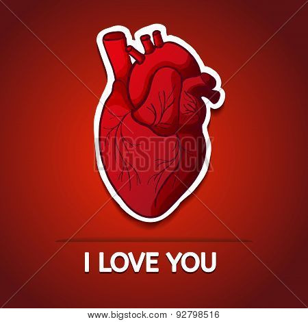 Drawing the human heart on a red background with the words I love you