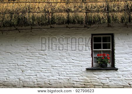 Thatched cottage with flowers in window