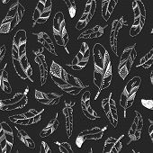 foto of feathers  - Vector feather background - JPG
