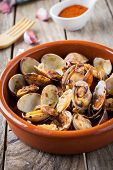image of clam  - clams with garlic at paprika spanish seafood style - JPG