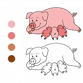 picture of baby pig  - Game for children - JPG