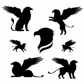 image of animal silhouette  - Griffin set of black silhouettes - JPG