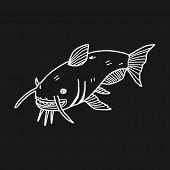 picture of catfish  - Catfish Doodle - JPG