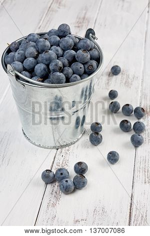 A small bucket filled with freshly picked blueberries on textured white background.