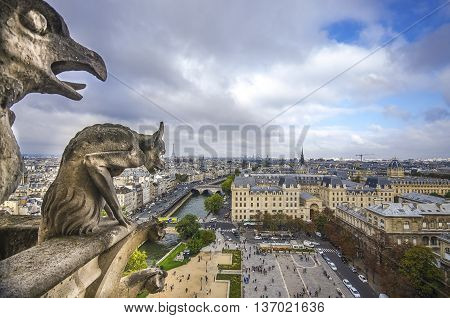 Chimera Of Notre Dame Cathedral In Paris, France.
