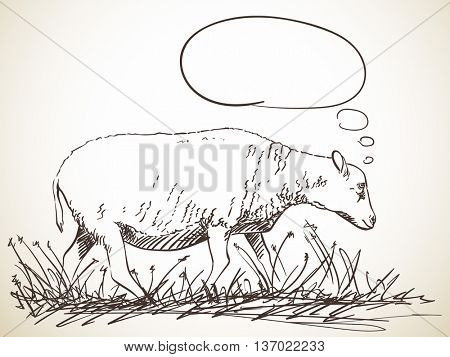 Sketch of sheep with thought bubble, Hand drawn vector illustration