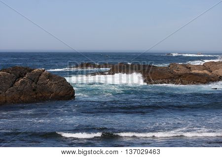 This is an image of volcanic rocks at Point Lobos State Preserve in Carmel, California.