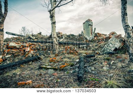 The remains of burned buildings.Overgrown grass and trees ruins
